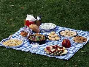 picnicspread